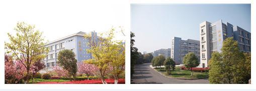 南京交通技师学院的校园环境图片展示